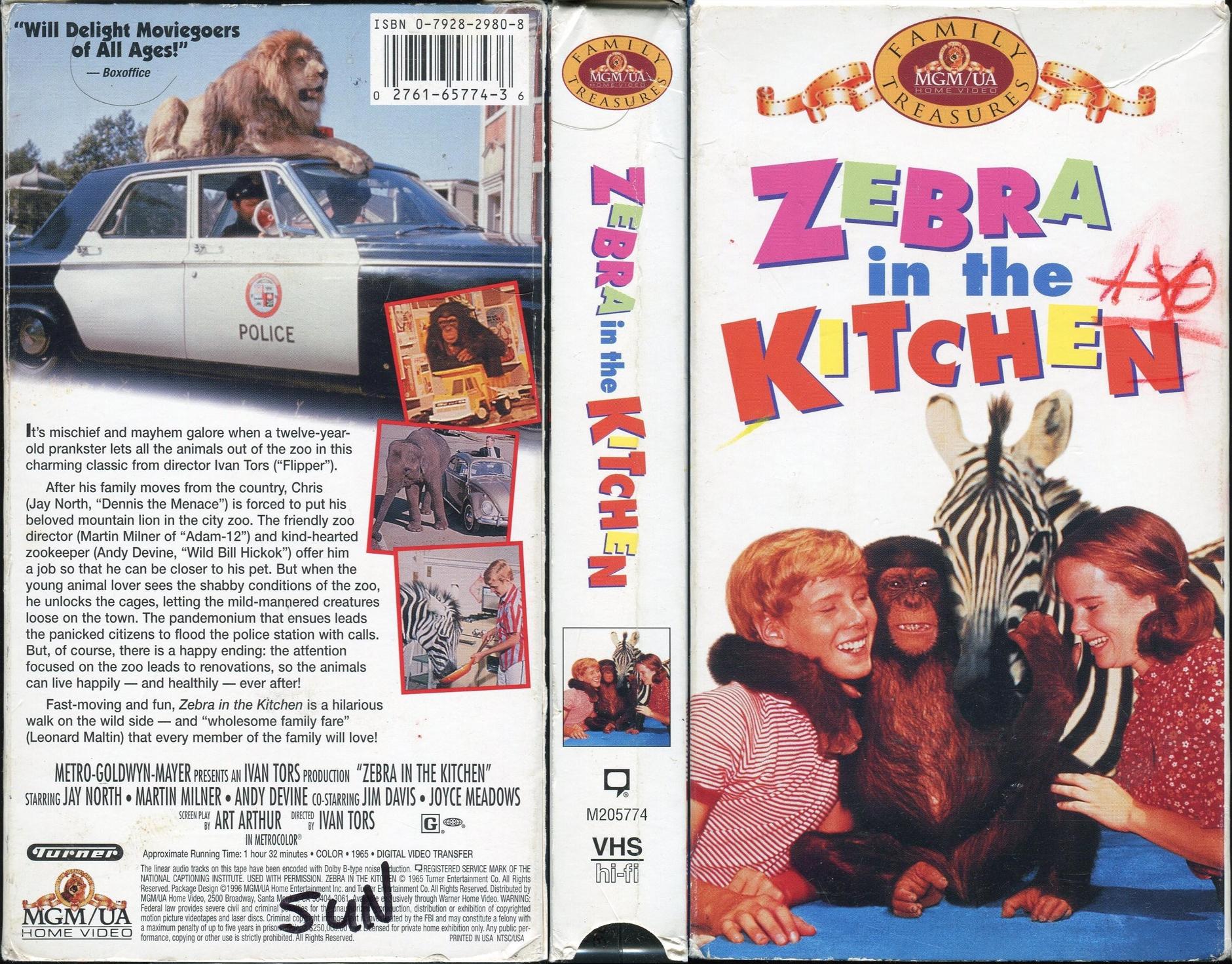 Zebra in the Kitchen movie